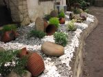 Garden and Landscape Design (1)